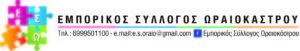 Logo ΕΣΩ